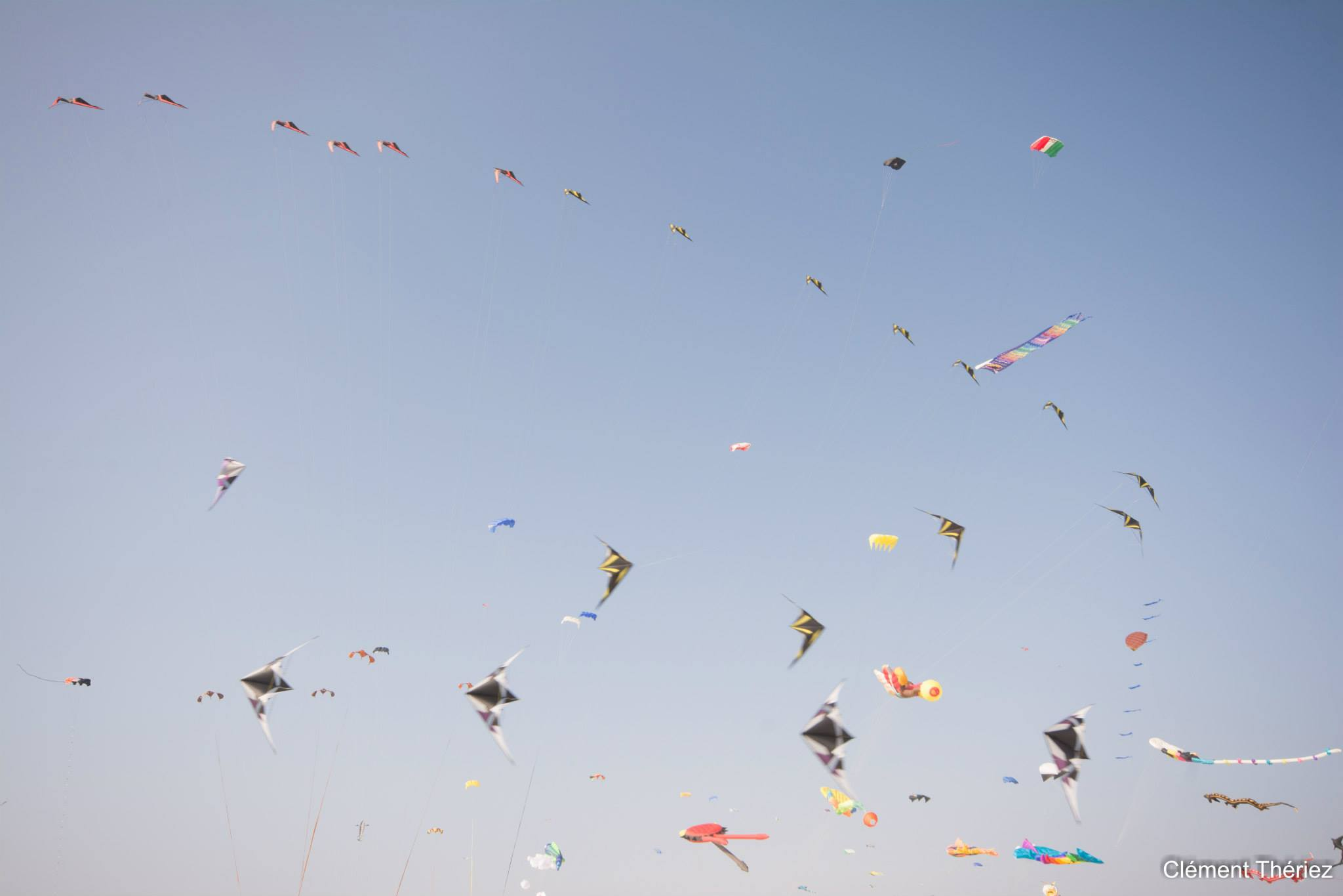 Berck : 30ème Rencontres Internationales de Cerfs Volants